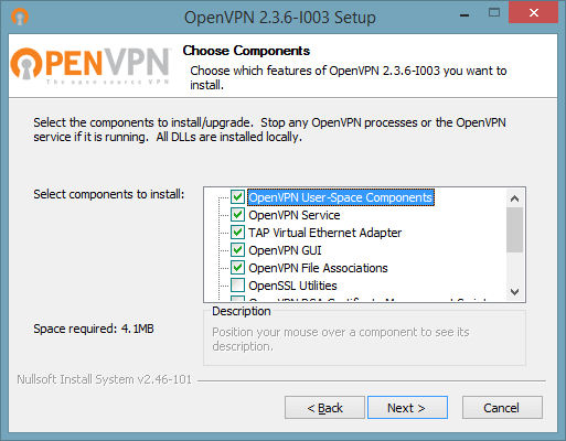 How to set up OpenVPN on Windows 10: Step 3