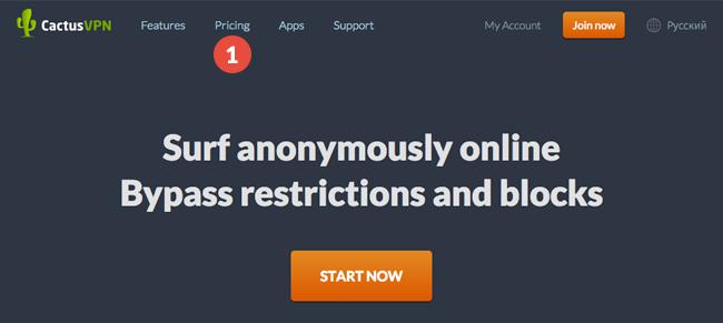 How to pay with Alipay, Boleto Bancario, Web Money, Yandex
