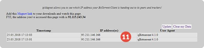How to Set Up Proxy on qBitTorrent | CactusVPN