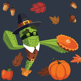 Thanksgiving vpn discount