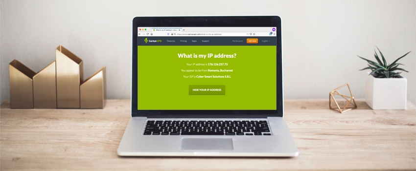 What Can Someone Do With Your IP Address?