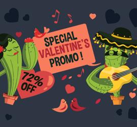 Valentine's Day Promotion